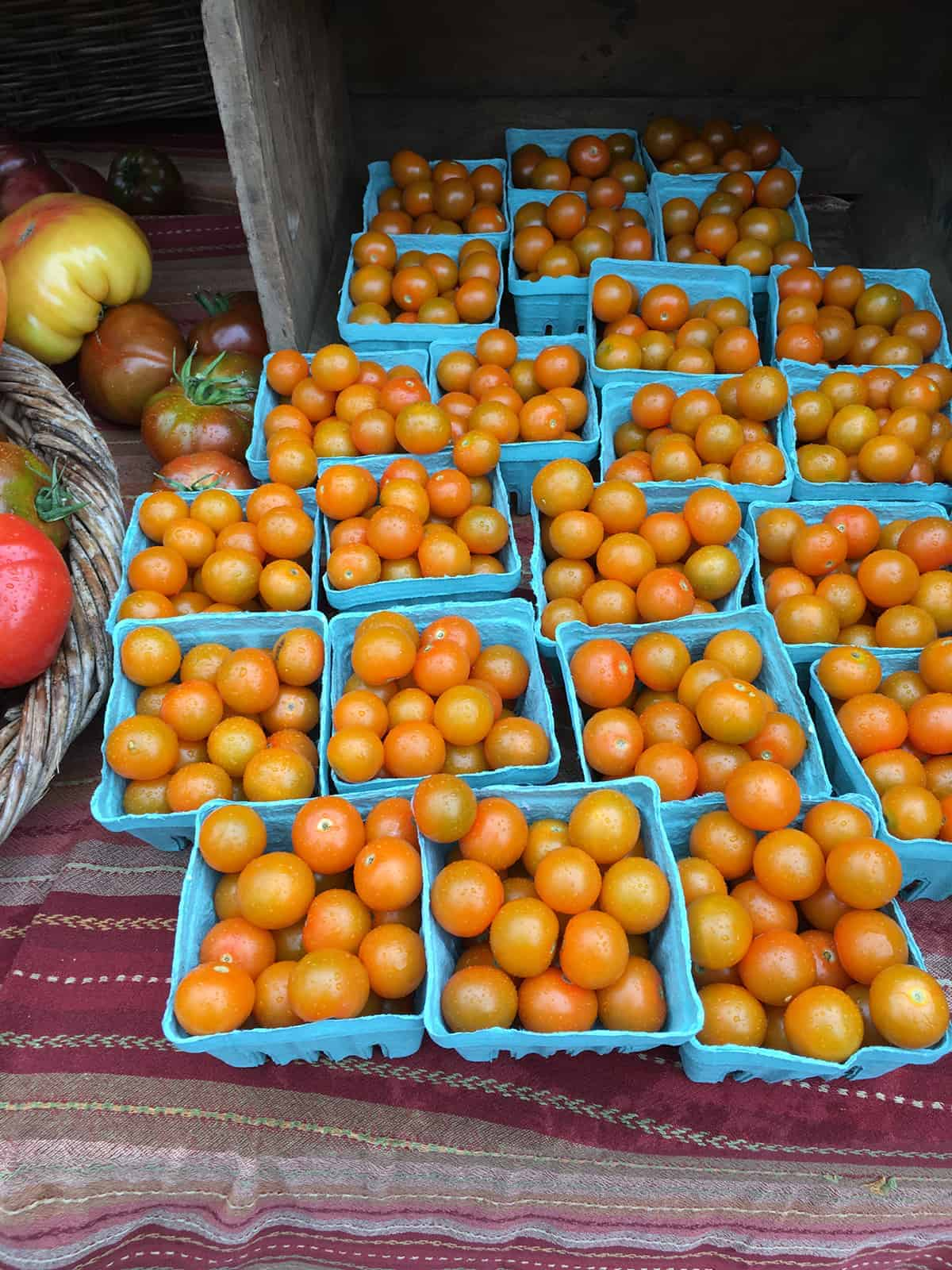 Orange cherry tomatoes on display at a farmers market