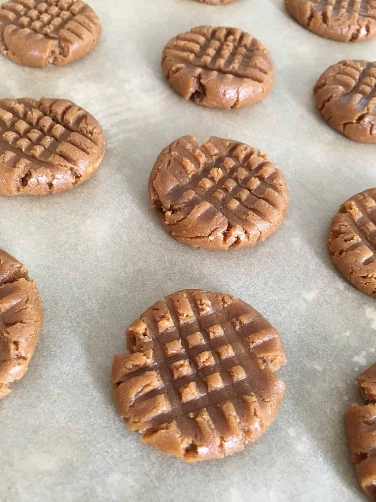 Close up of peanut butter cookies with a crisscross design on their tops