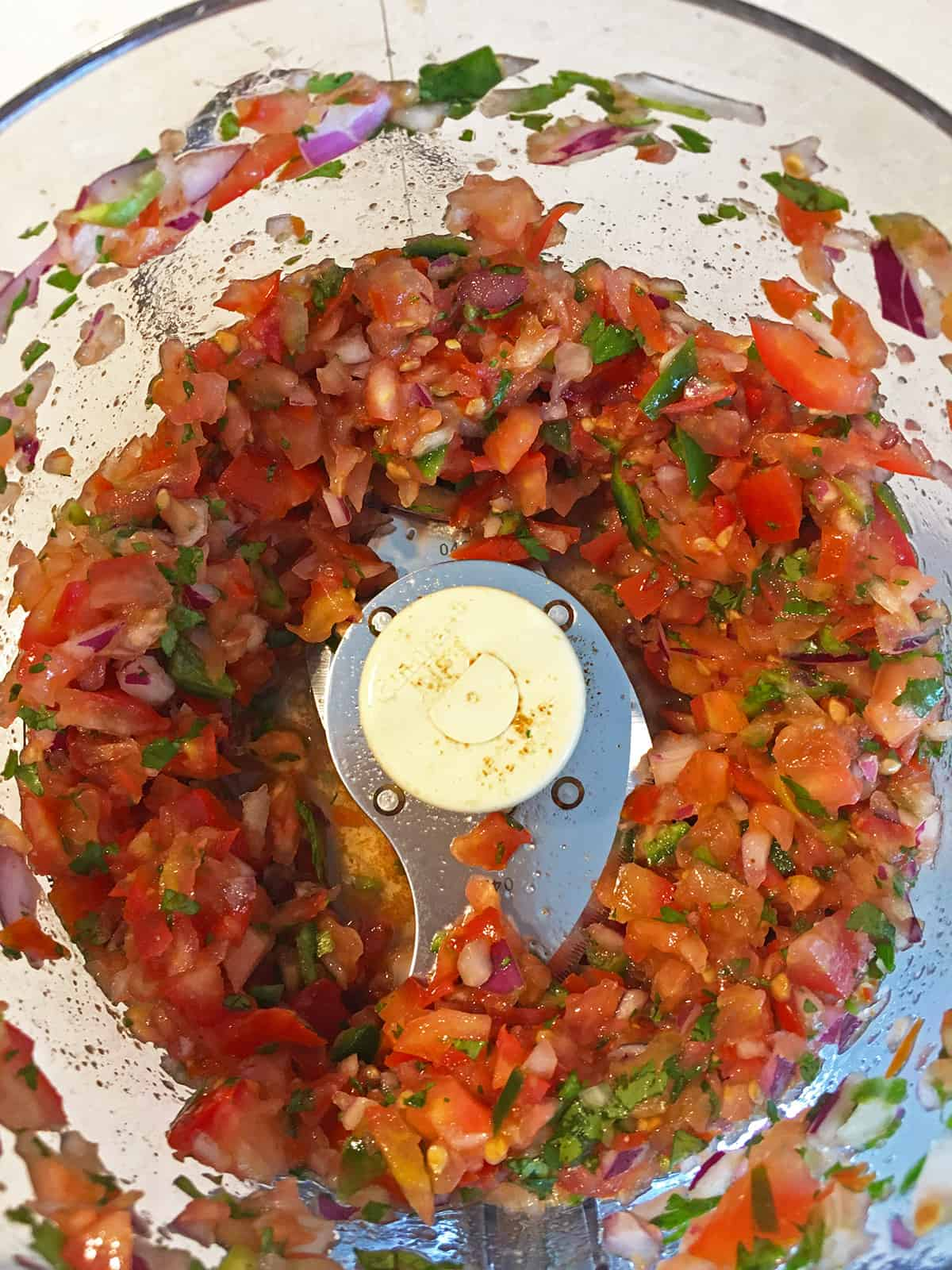 Freshly made salsa in a food processor