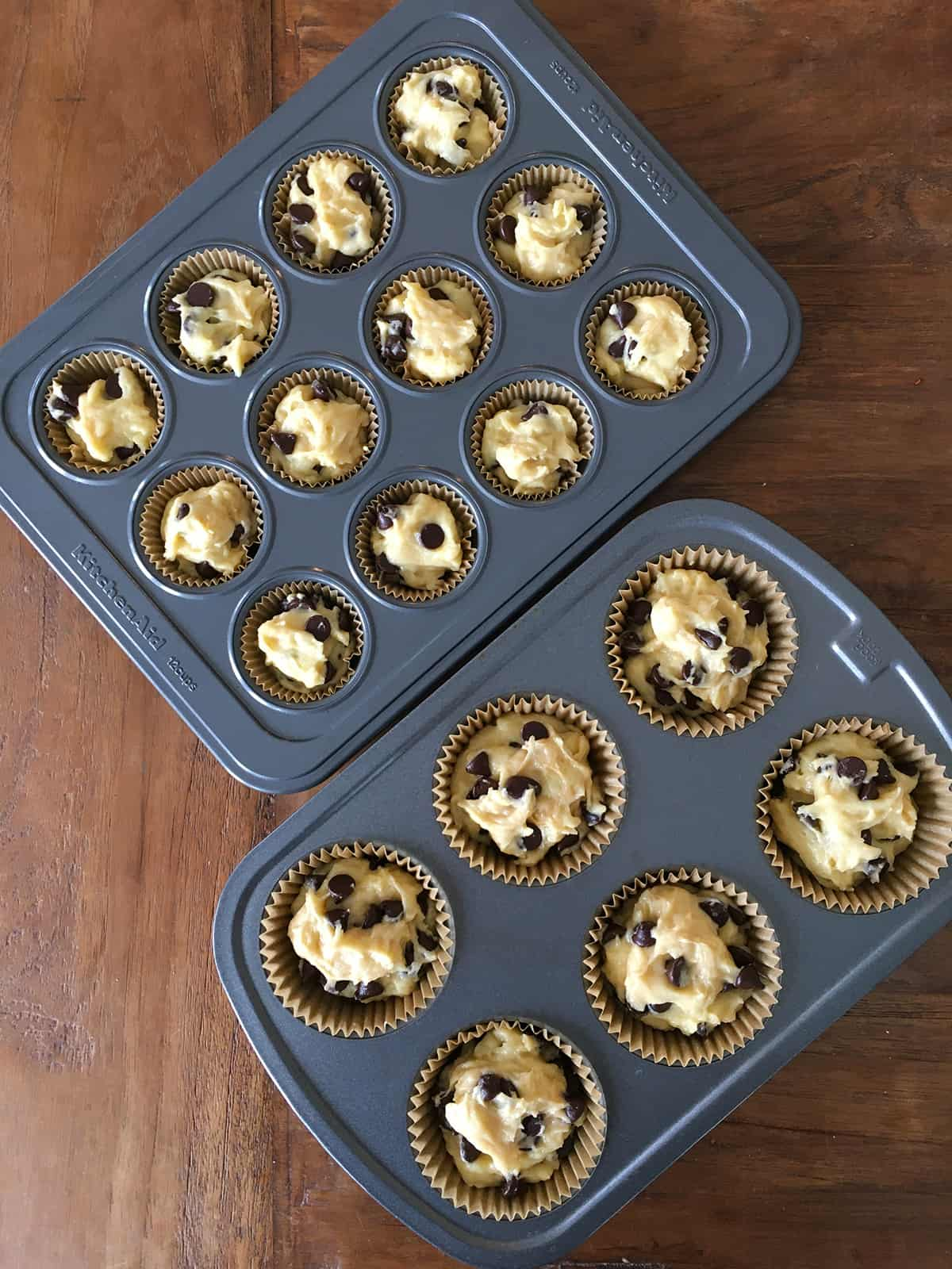 Mini and regular muffin tins, lined and filled with chocolate chip muffin batter